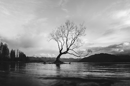 Black and White Photography - Top 10 Tips for Beginners