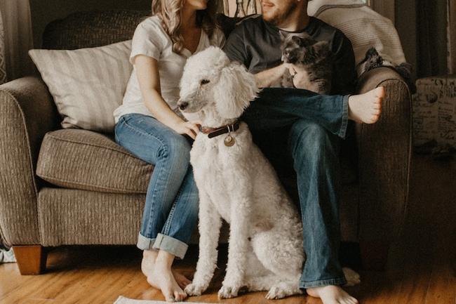 Family portrait tips
