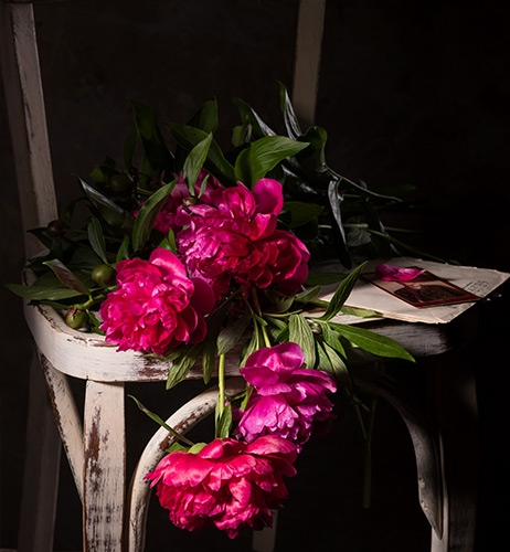 Tips for Still Life Photography