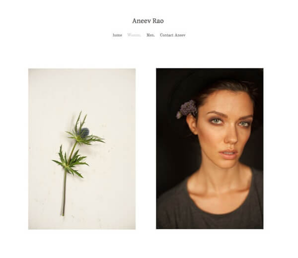 Aneev Rao Portfolio Website Examples
