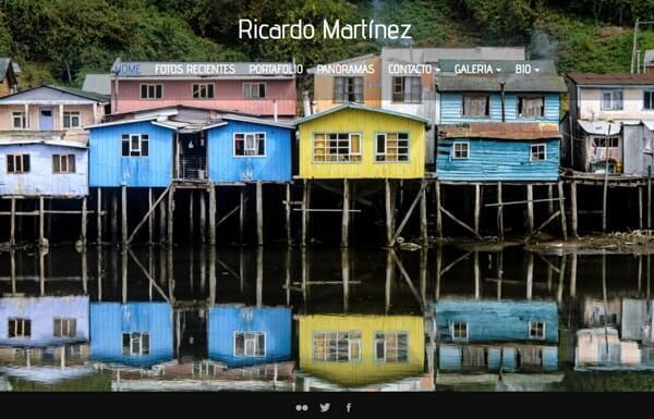 Ricardo Martinez Portfolio Website Examples