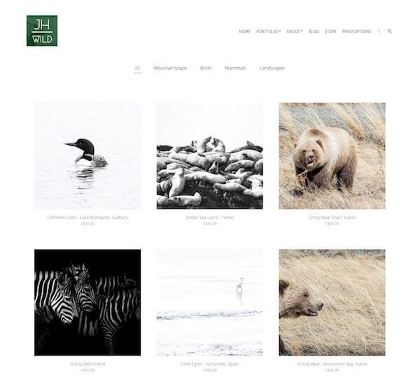 James Henry Portfolio Website Examples