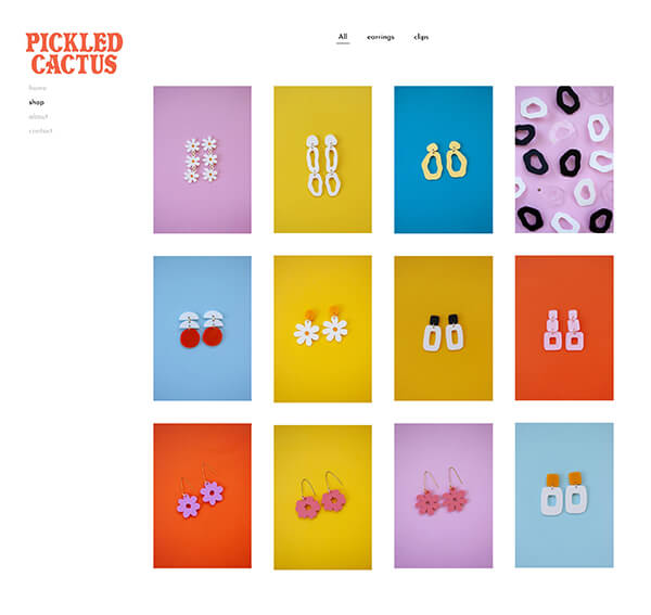 Pickled Cactus Portfolio Website Examples