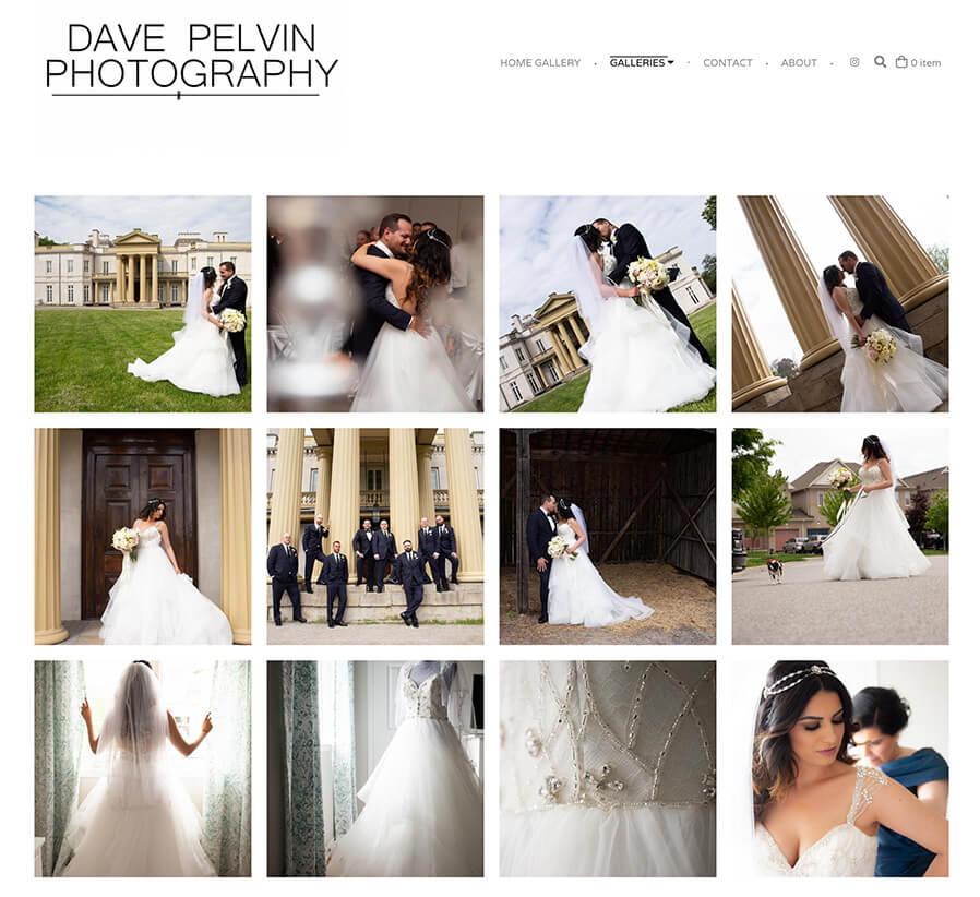 Dave Pelvin Photography Portfolio Website Examples