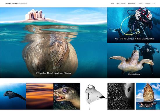 Nick Polanszky Portfolio Website Examples