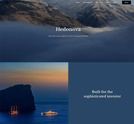 Hedonova Portfolio Website Examples