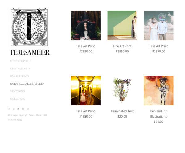 Teresa Meier Portfolio Website Examples