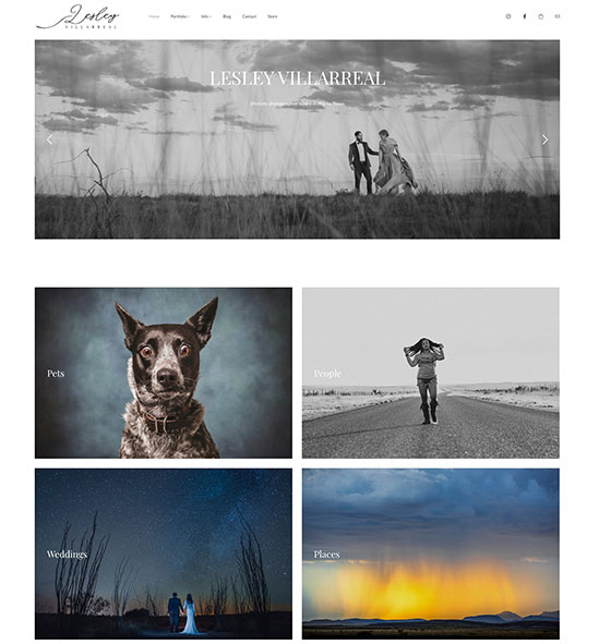 Lesley Villarreal Portfolio Website Examples