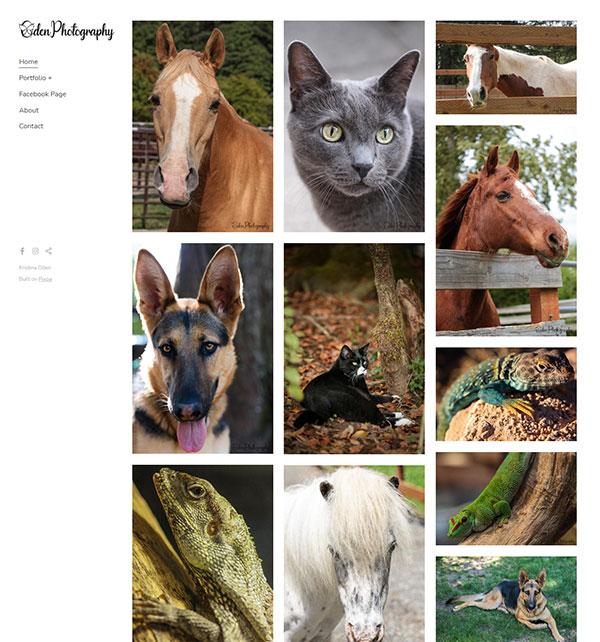 Kristina Oden Portfolio Website Examples