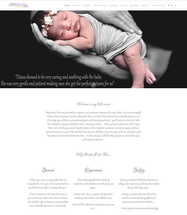 Diana  Portfolio Website Examples