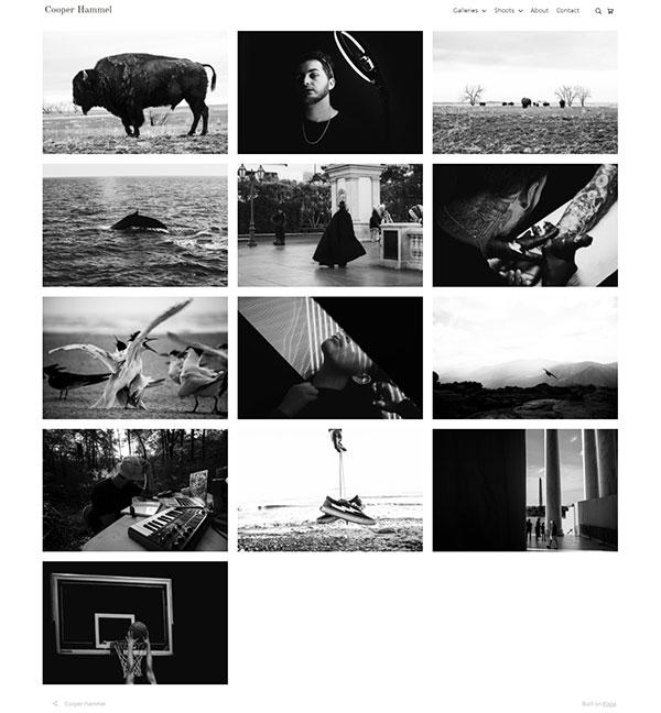 Cooper Hammel Portfolio Website Examples