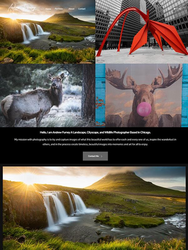 Andrew Furney Portfolio Website Examples