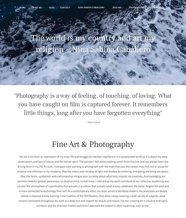 Nina Sabina Portfolio Website Examples