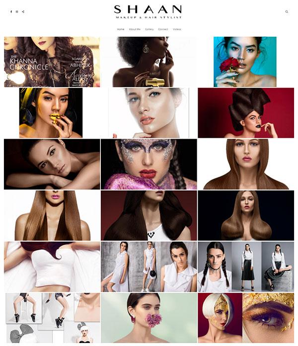 Shaan Portfolio Website Examples