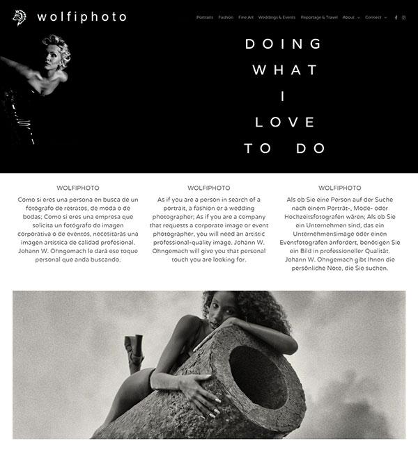Johann Wolfgang Ohngemach Portfolio Website Examples