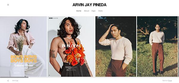 Arvin Jay Portfolio Website Examples