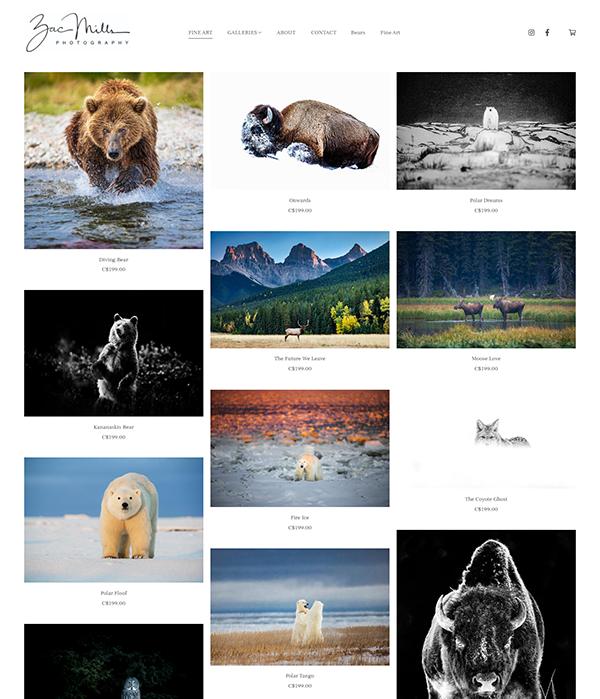Zac Mills Portfolio Website Examples